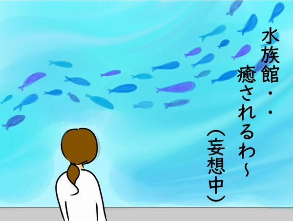 水族館で癒し妄想中