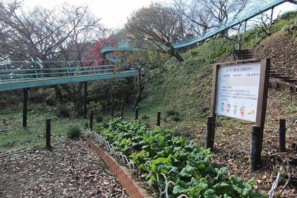 吾妻山公園のローラー滑り台