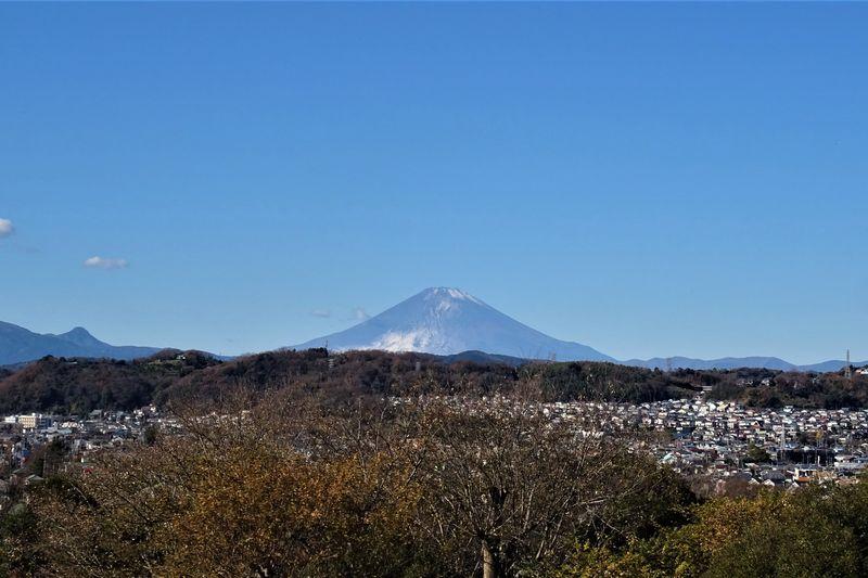 大磯城山公園から見る富士山