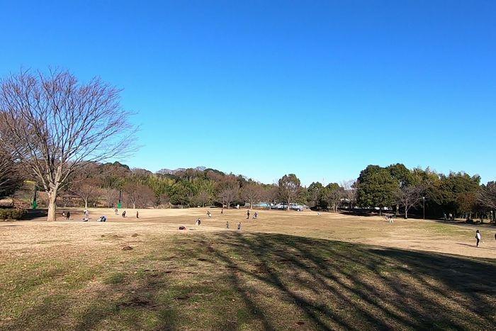 茅ヶ崎里山公園 多目的広場