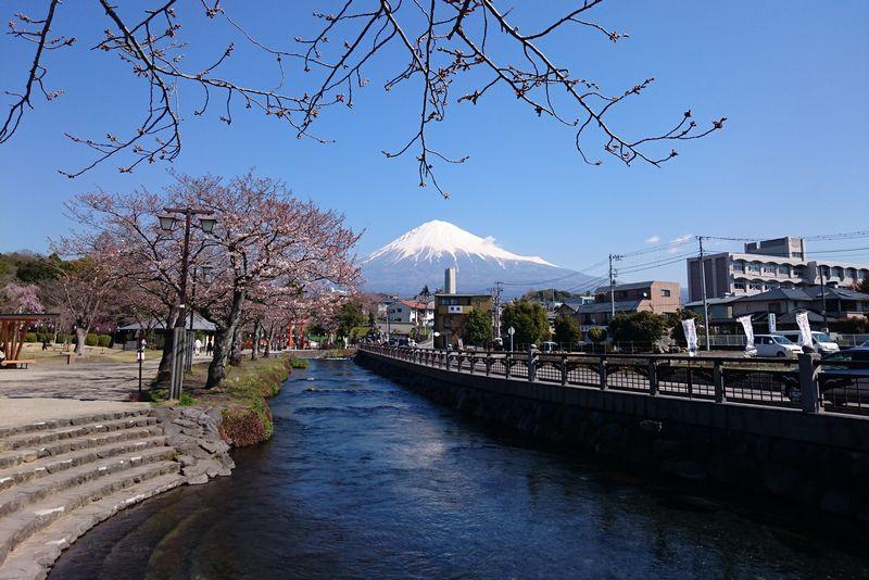 富士山本宮浅間大社 神田川ふれあい広場