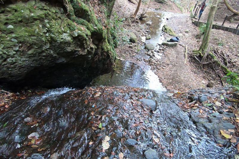 山北つぶらの公園 開運の滝 滝の上