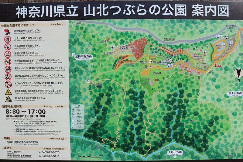 山北つぶらの公園 案内図