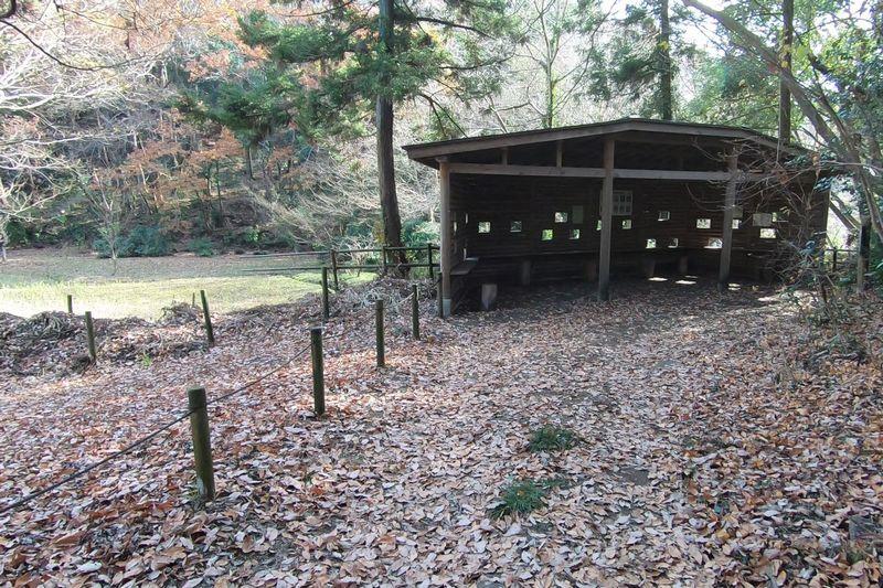 座間谷戸山公園 野鳥観察小屋