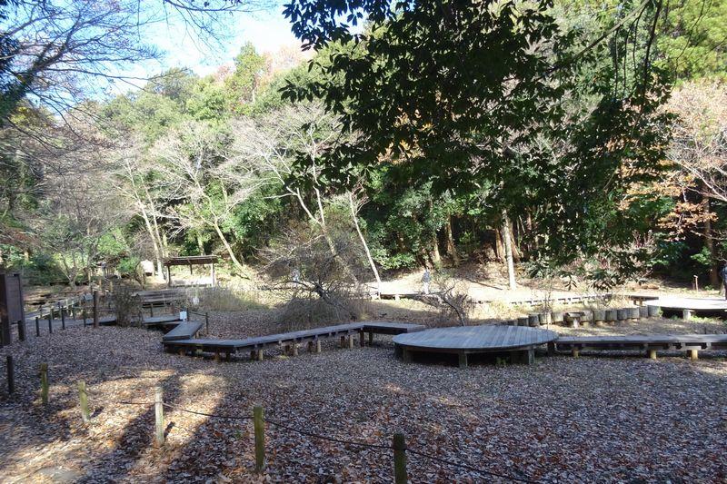 座間谷戸山公園 わき水の谷