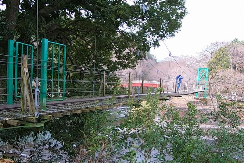 裾野市中央公園 吊り橋