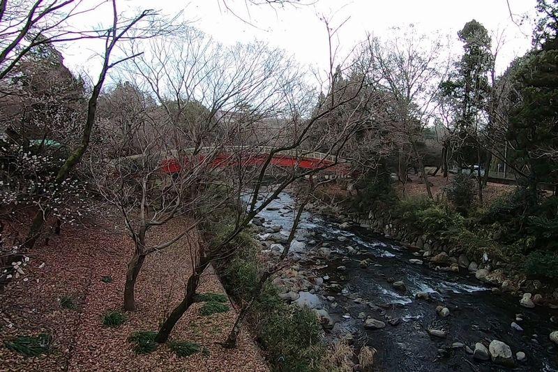 裾野市中央公園 太鼓橋